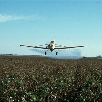 12-Spraying-Cotton-by-Plane